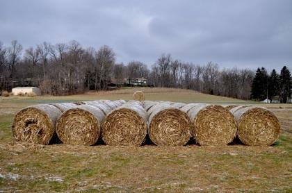 Hay Bales - Lancaster, Pennsylvania