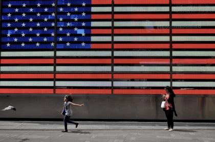 Bird Chase - New York City, New York