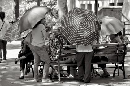 Columbus Park Umbrellas - New York City, New York