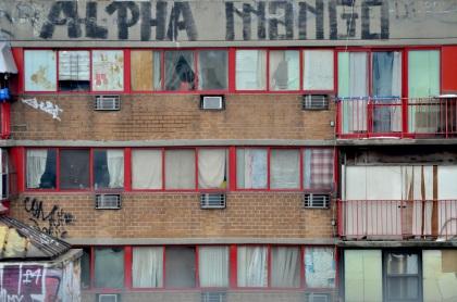 Alpha Mango - New York City, New York