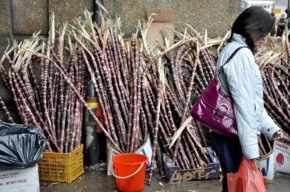 Shopping For Sugar Cane - New York City, New York