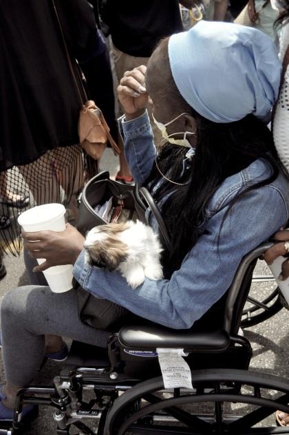 Wheelchair Dog - New Orleans, Louisiana