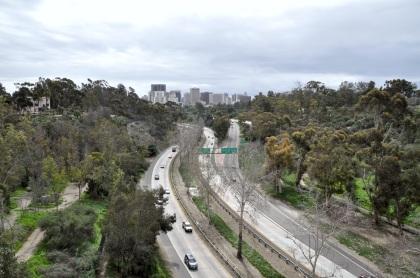 balboa-park-skyline-view-t