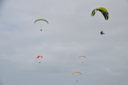 paragliders-t