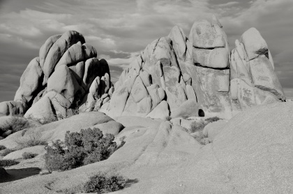 Joshua Tree Rock Formations T