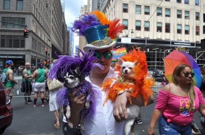 Pride Dogs T